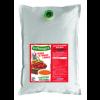 Velouté tomate-basilic