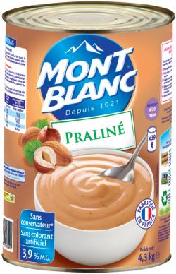 Crème dessert praliné