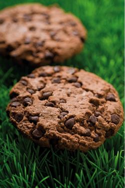 Cookie tout chocolat/pépites choco BIO