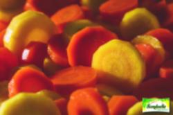 Duo de carottes en rondelles
