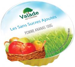 Purée de fruits pomme-ananas